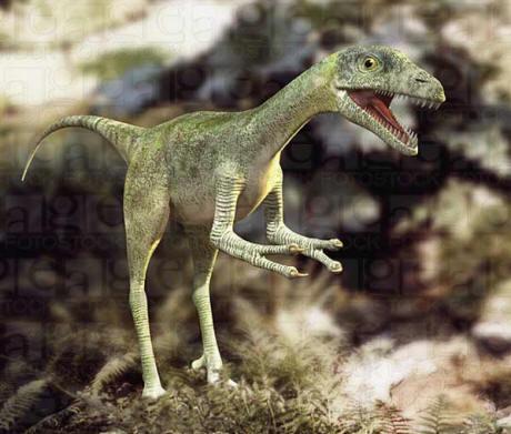 Conoce los tipos de Dinosaurios que existieron.